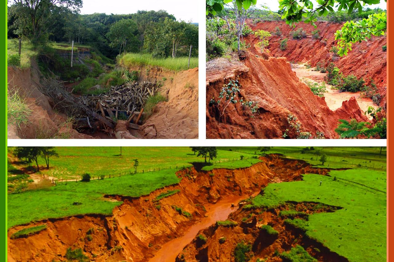 Erosão do Solo: degradação e abandono de terras no Médio Vale do Paraíba, RJ